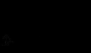 03_Logo2_OliverStephan_Größe1000x585